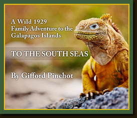To the South Seas by Gifford Pinchot
