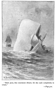 """Illustration of a later edition of """"Moby Dick"""""""